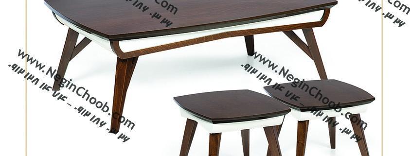 جلو مبلی و عسلی مدل 0022 نگین چوب صفحه MDF پایه چوب رنگی